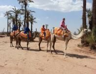 A guide tour by camel of the desert area outside Marrakech, Morocco.