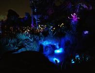 Pandora, World of Avatar, glows with bioluminescence at night