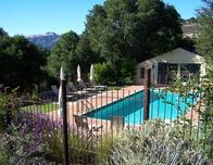 Pool at Holman Ranch Vineyard, photo by Matt Gnibus