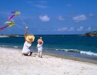 Kite playing fun along the shores of Banderas Bay.