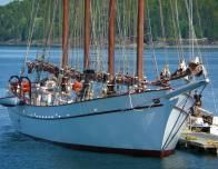 Go Sailing in Bar Harbor