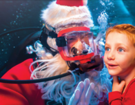 Santa in scuba gear, daily over the holidays at the Newport Aquarium.