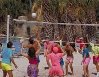 Hot poolside Volleyball competition for guests at Swan and Dolphin.