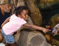 Turtle Touch Tank at National Aquarium in Baltimore