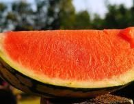 Sink your teeth into an award-winning watermelon in at the Hope Watermelon Festival