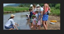 Family Programs at Aspen Center for Environmental Studies.