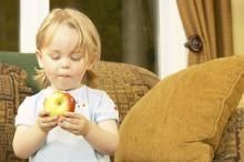 Introduce your toddlers to healthy eating with apples they picked themselves.